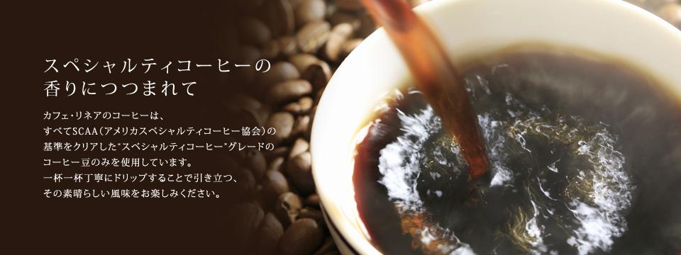 """スペシャルティコーヒーの香りにつつまれて  カフェ・リネアのコーヒーは、すべてSCAA(アメリカスペシャルティコーヒー協会)の基準をクリアした""""スペシャルティコーヒー""""グレードのコーヒー豆のみを使用しています。 一杯一杯丁寧にドリップすることで引き立つ、その素晴らしい風味をお楽しみください。"""